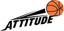 Picture for category Attitude Basketball