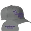 Picture of HH - Flexfit Hat