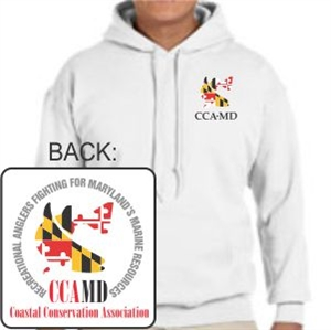 Picture of CCAMD - Hoodie