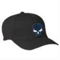 Picture of MSP - Black/Blue Skull Flexfit