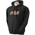 Picture of MD Attitude - Hoodie