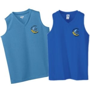 Picture of BS - Ladies' V-Neck