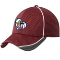 Picture of FCA - New Era Hat